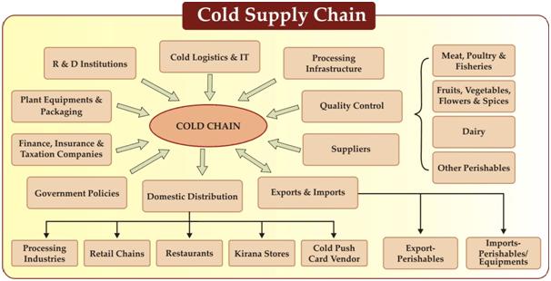 Cold Chain